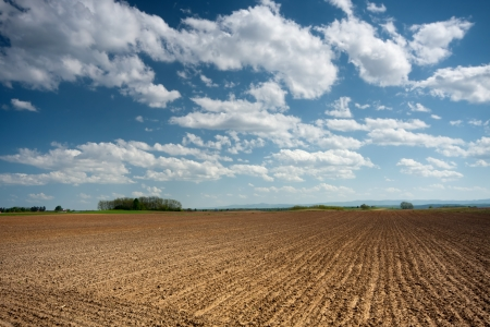 Plowed field with a blue sky and clouds