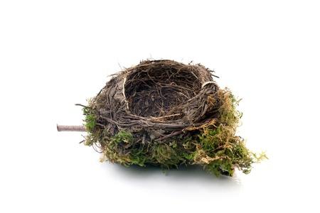 nido de pajaros: nido de pájaro vacía aisladas sobre fondo blanco Foto de archivo