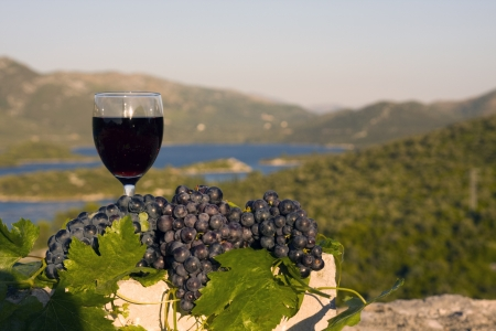 Glass of wine and grapes on stone Stock Photo