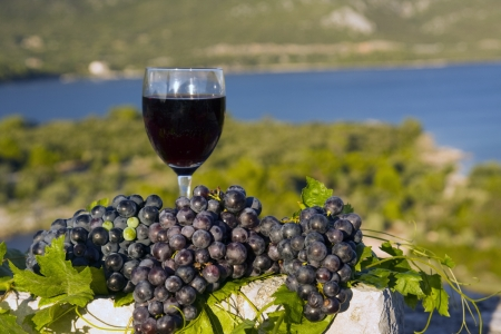 Glass of wine and grapes on stone Standard-Bild