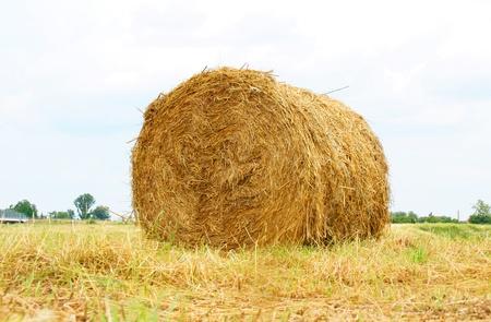 time bound: straw bales