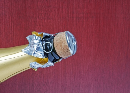 bouteille champagne: Bouteille de Champagne