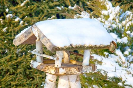 maison oiseau: maison d'oiseau de neige