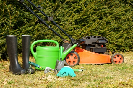 mower: Garden tools and lawn mower