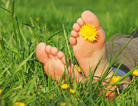 feet in green grass with flower photo