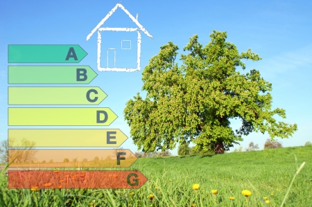 tree and energy scale Stock Photo - 14041366