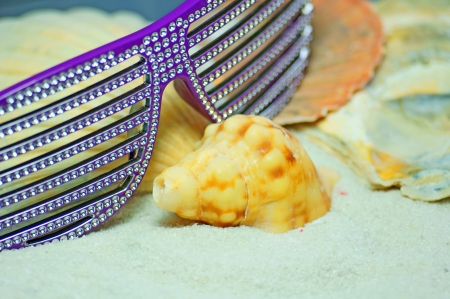 shells and sunglasses in the sand photo