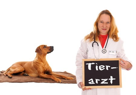 Veterinarian with dog and shield with the german words veterinarian