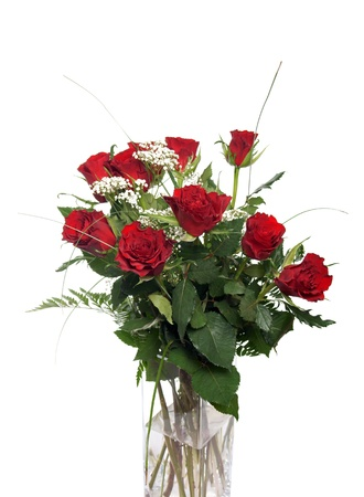 red roses Stock Photo - 18034596