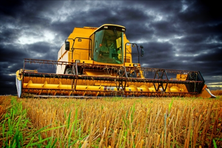 harvesters: Combine Harvester and sky with dark clouds Stock Photo