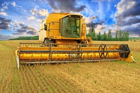 cosechadora: Cosechadoras y el cielo con nubes hermosas