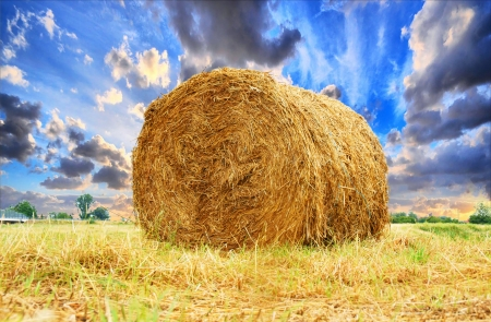 Straw bales and beautiful sky photo