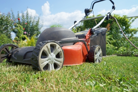 mower: lawn mower on green grass