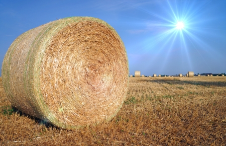 straw bale with sun photo