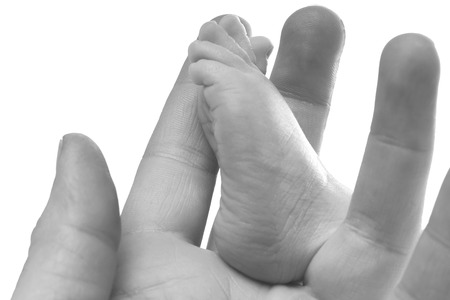 Hand holding a baby foot in black and white Stock Photo - 22778769