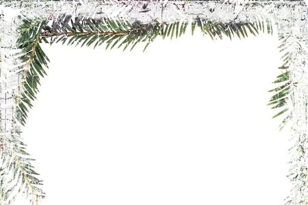 fir twig: Fir twig frame with ice texture