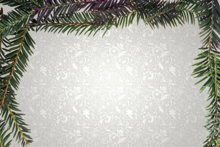 fir twig: Fir twig frame on abstract background Stock Photo