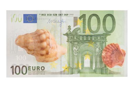Seashells with euro money
