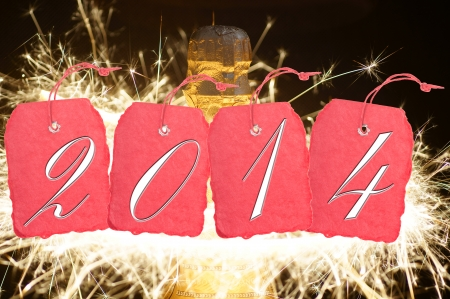 Shield with the year number 2014 and fireworks Stock Photo - 24658686
