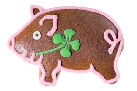 Lucky Pig Gingerbread isolated over a white background photo