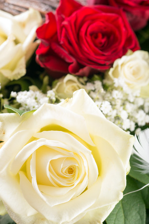 bouquet of roses with white and red roses photo