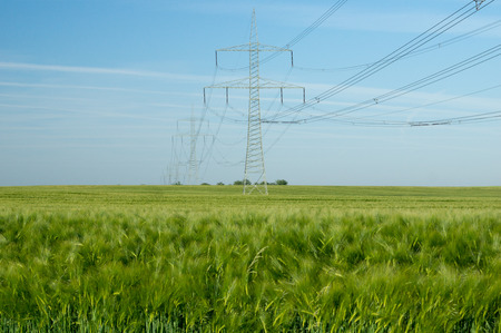 energy suppliers: Power pole and barley field