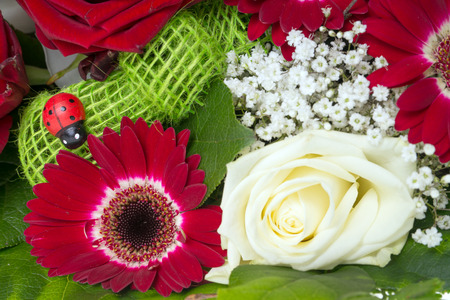 love proof: colorful bouquet of flowers Stock Photo