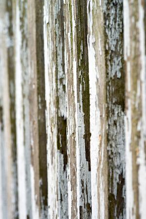 wood molding: Wooden fence background
