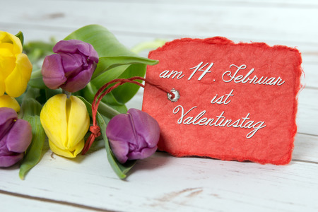 love proof: Tulips with shield and the german words on February 14 is Valentines Day