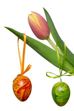 flowerpower: beautiful tulips with easter eggs