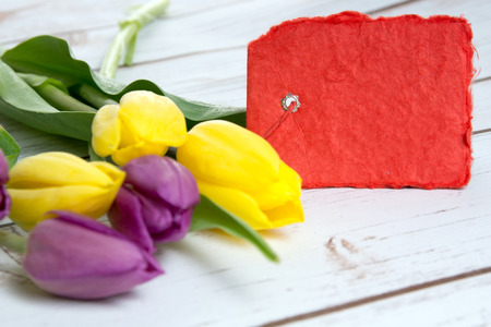 love proof: Tulips and blank small red shield