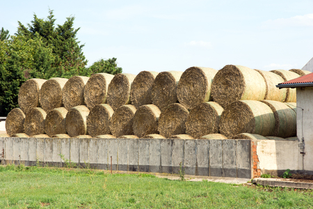 stockpile: Many straw bales being stacked on a storage area