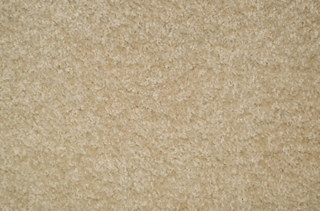 carpet and flooring: carpeted floor background Stock Photo