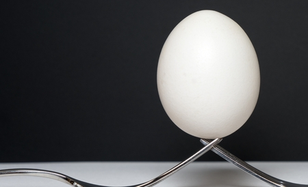 product range: two forks and an egg against a dark background Stock Photo