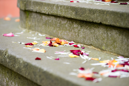 registry: Rose petals are outside the registry office
