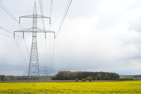 energy suppliers: electricity pylon and yellow rapefield Stock Photo