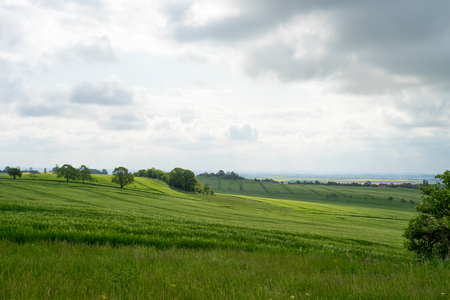 foresight: Fields and meadows with panoramic views