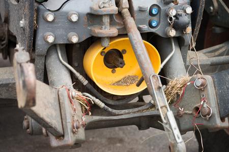 crankshaft: Crankshaft on a tractor Stock Photo