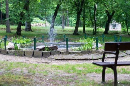 garden bench: Garden area with garden bench