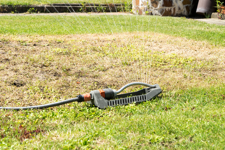 lawn area: irrigate a dry grass Stock Photo