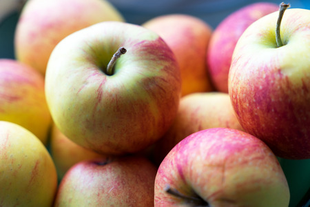 pome: many red and yellow apples
