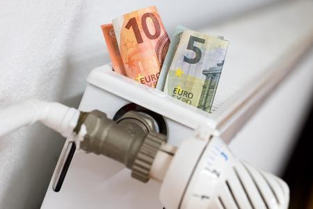 Radiatori con banconote in euro
