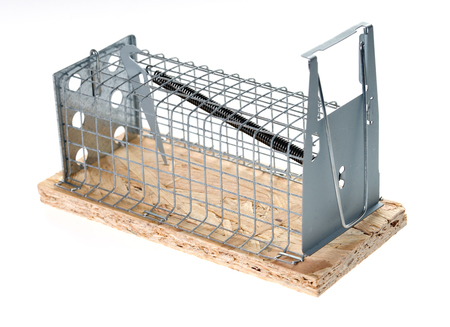 mousetrap: mousetrap over a white background