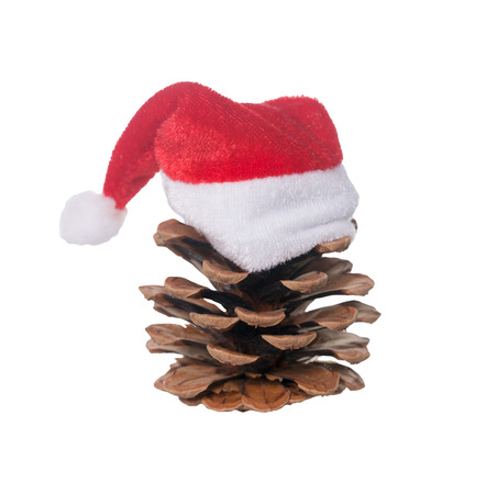 lapel: Pine cone with Santa Claus cap isolated over a white background