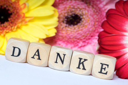 Flowers and wooden cubes with the german word Thank you