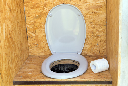 Plumps toilet with toilet seat and toilet paper