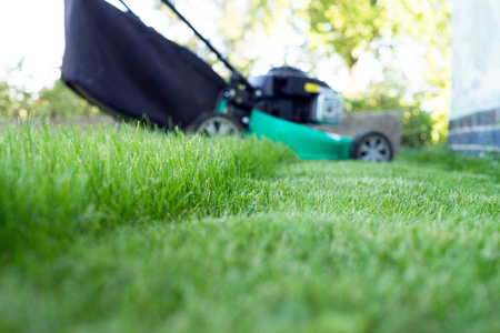 green lawn and lawn mower Stock Photo