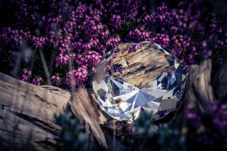 Diamond in the sunlight