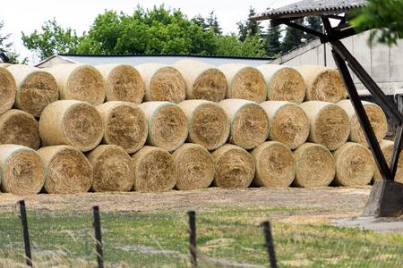 stacked straw bales Standard-Bild - 105128172