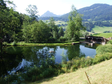 Small private pond in Nesslau - Canton of St. Gallen, Switzerland